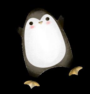 """пингвин из игры """"Фотоохота"""""""