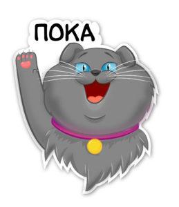 стикер кот